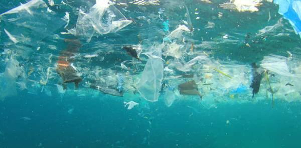 自来水瓶装水存在微塑料污染?净水器能做什么?